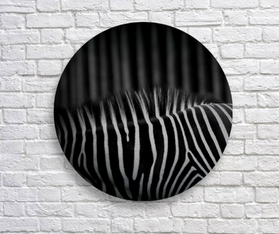 Lincoln Park, brushed aluminum metal disk, zebra pattern, ready to hang, wall art